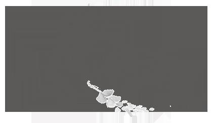 Flora - A Child Theme For Divi